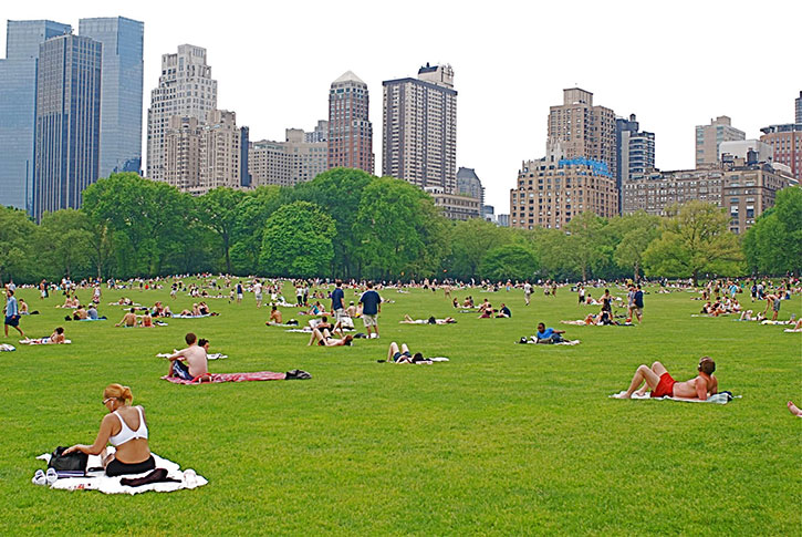 Top 10 Attraction New York Se Balader 224 Central Park