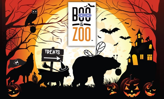 feter-halloween-newyork-boo-at-the-zoo