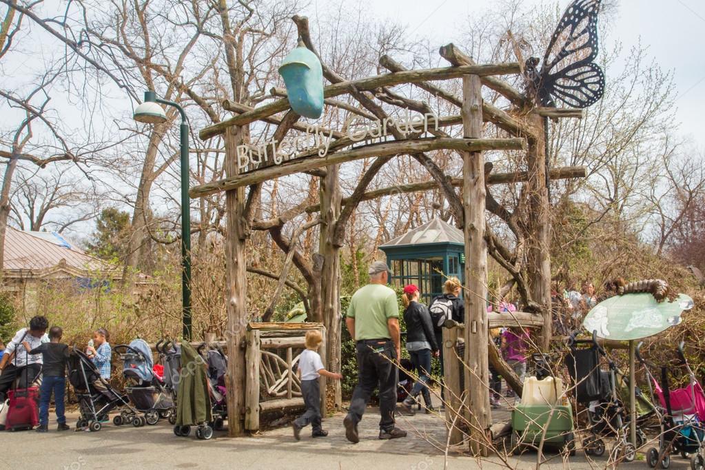 Butterfly Garden, le jardin des papillons au zoo du Bronx à New York