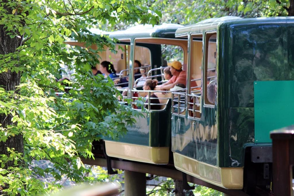 Train se déplaçant dans le zoo du Bronx