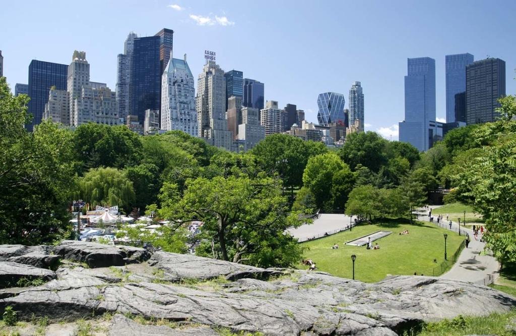 Vue sur Central Park et les buildings en fond