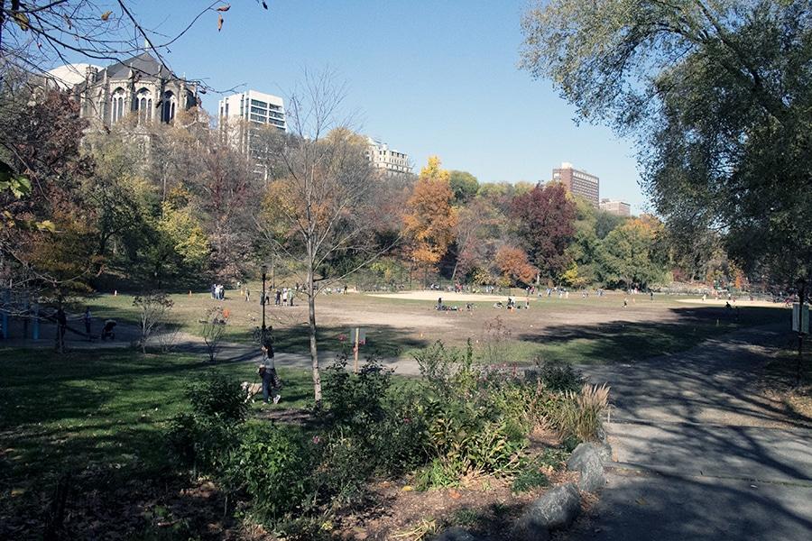 Morningside park est un parc situé entre Colombia University et Harlem