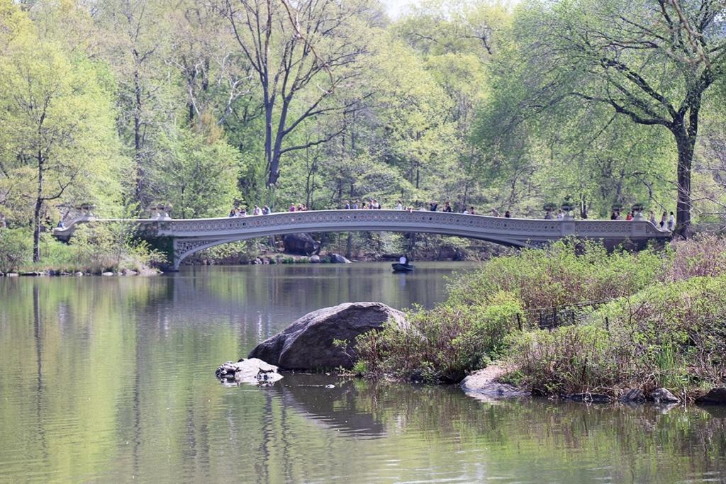 Bow Bridge | Central Park New York