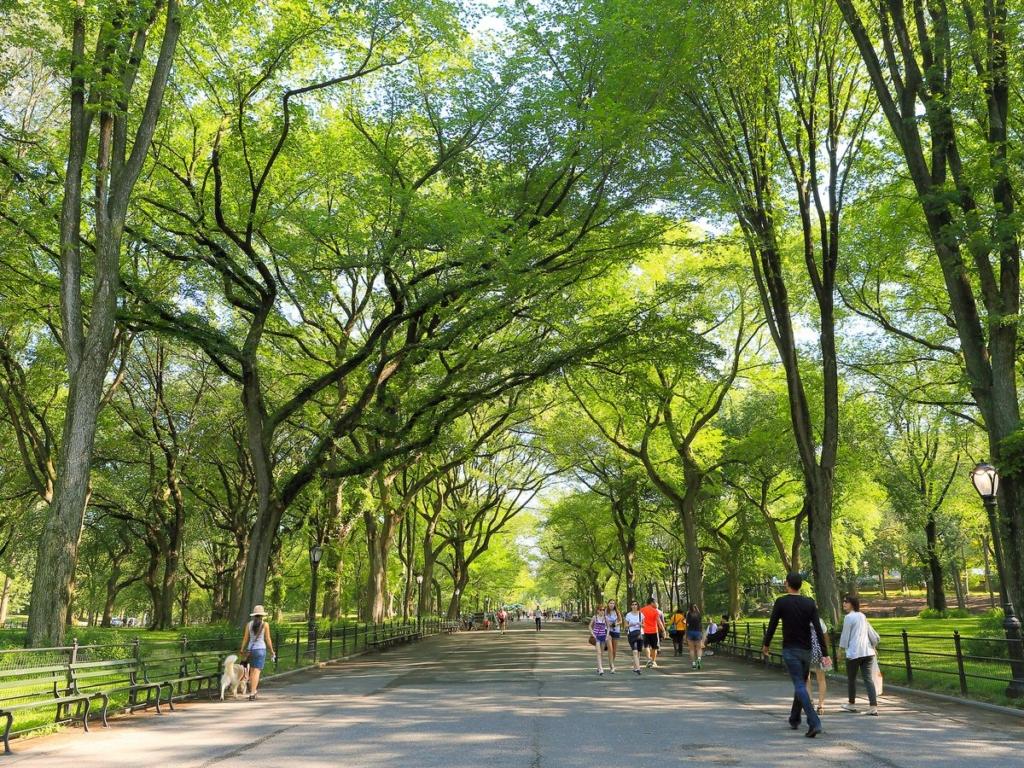 The Mall, grande allé sous les arbres de Central Park