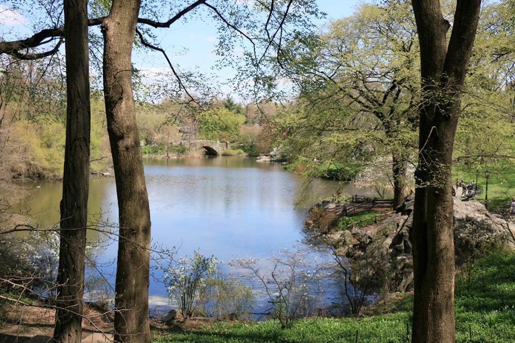 Central Park New York | The Pond